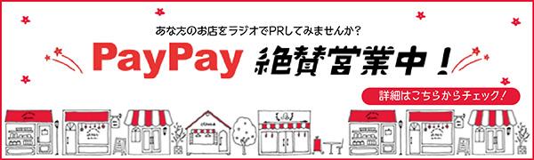 PayPay 絶賛営業中!